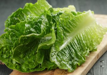 It's Time for the Annual Romaine Recall
